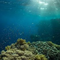 Saint John's Reef.