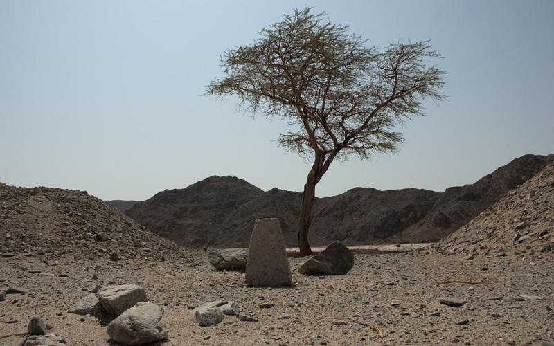 пустыня ,  египет , африка , сцуко жарко